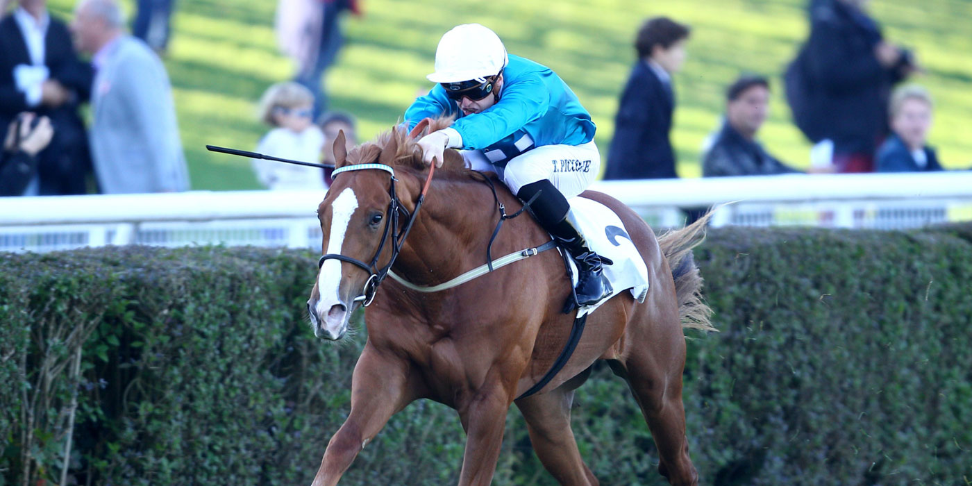 Robin Of Navan winning the G1 Criterium De Saint-Cloud