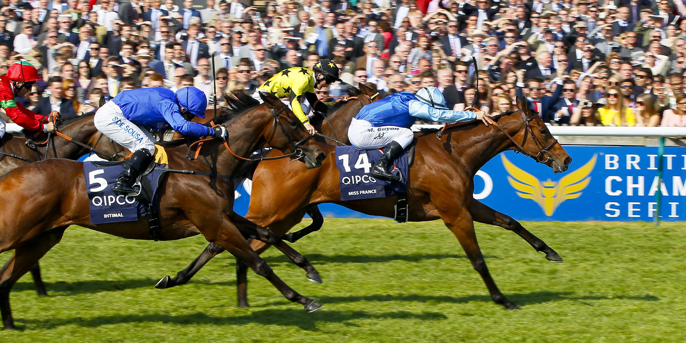 Miss France winning the G1 1,000 Guineas (mating advised and managed)